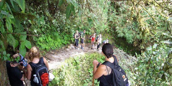 Is de Inca Trail zwaar?